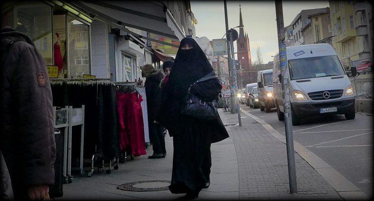 Lars Hedegaard: Koloniseringen af Danmark
